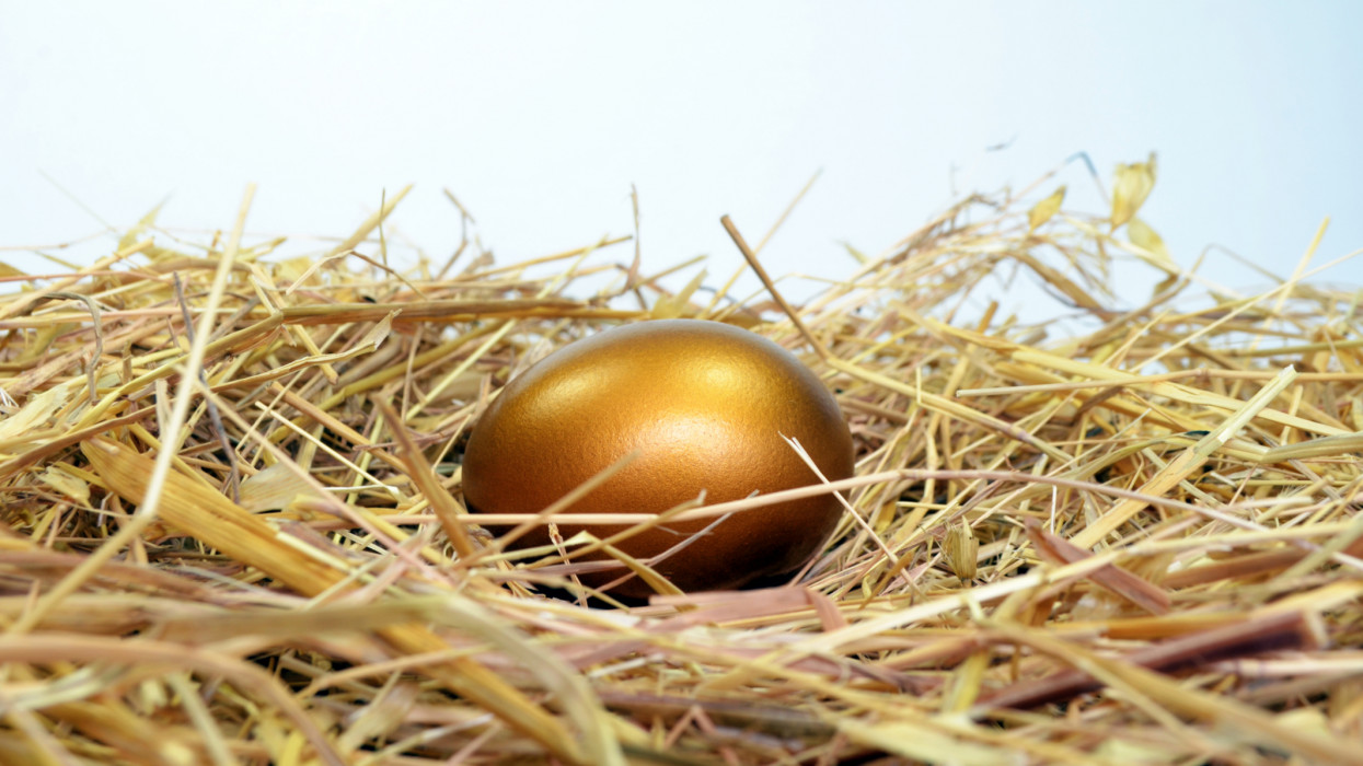Golden Egg on a bed of straw