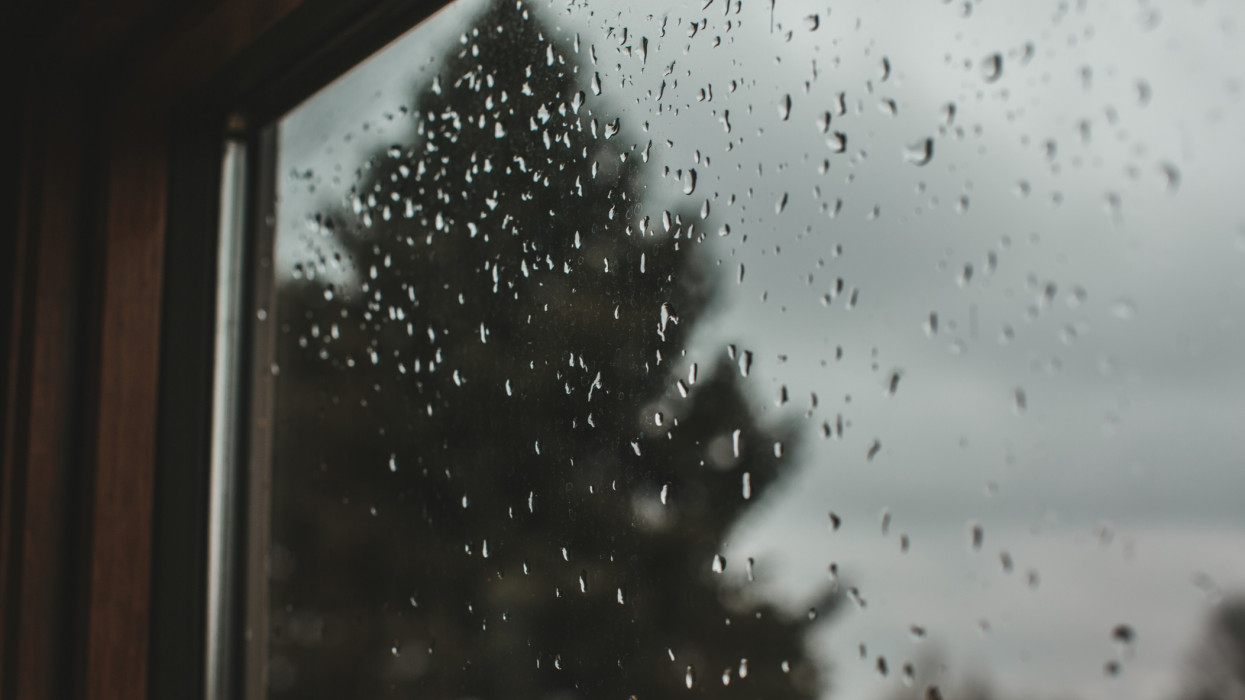 Looking throw a window at a gray overcast sky and a tall dark pine tree as rain drops cling to the window pain.