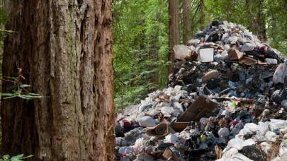 Munkában a szemétkommandók: rengeteg illegális hulladékhegyet számoltak fel