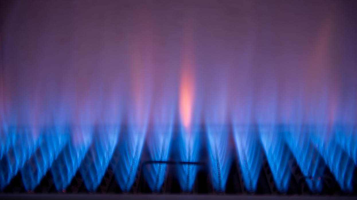 The beautiful flames of a gas fire.