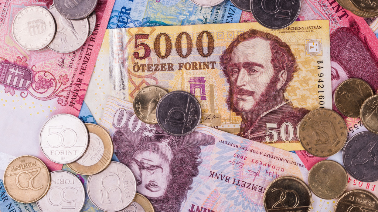 Coins Hungarian currency -Forint, close-up. In the background banknotes of different denominations.