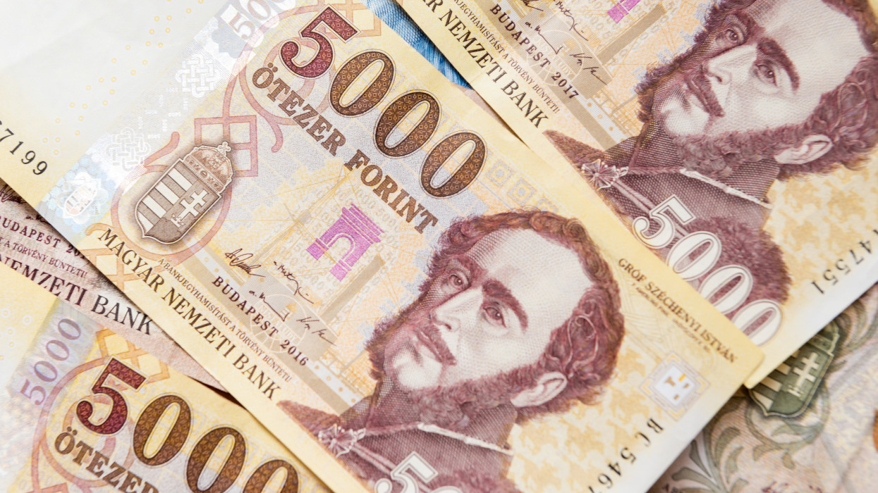 Financial background of Hungarian money - forints currency