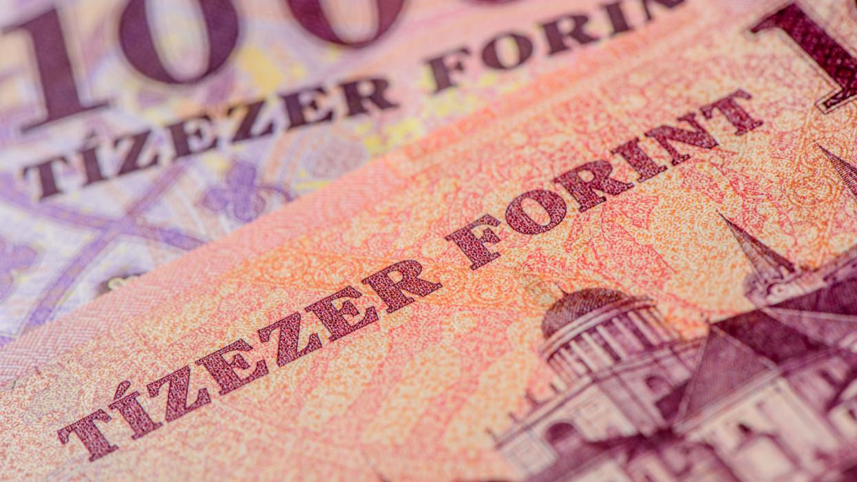 new forint 2014