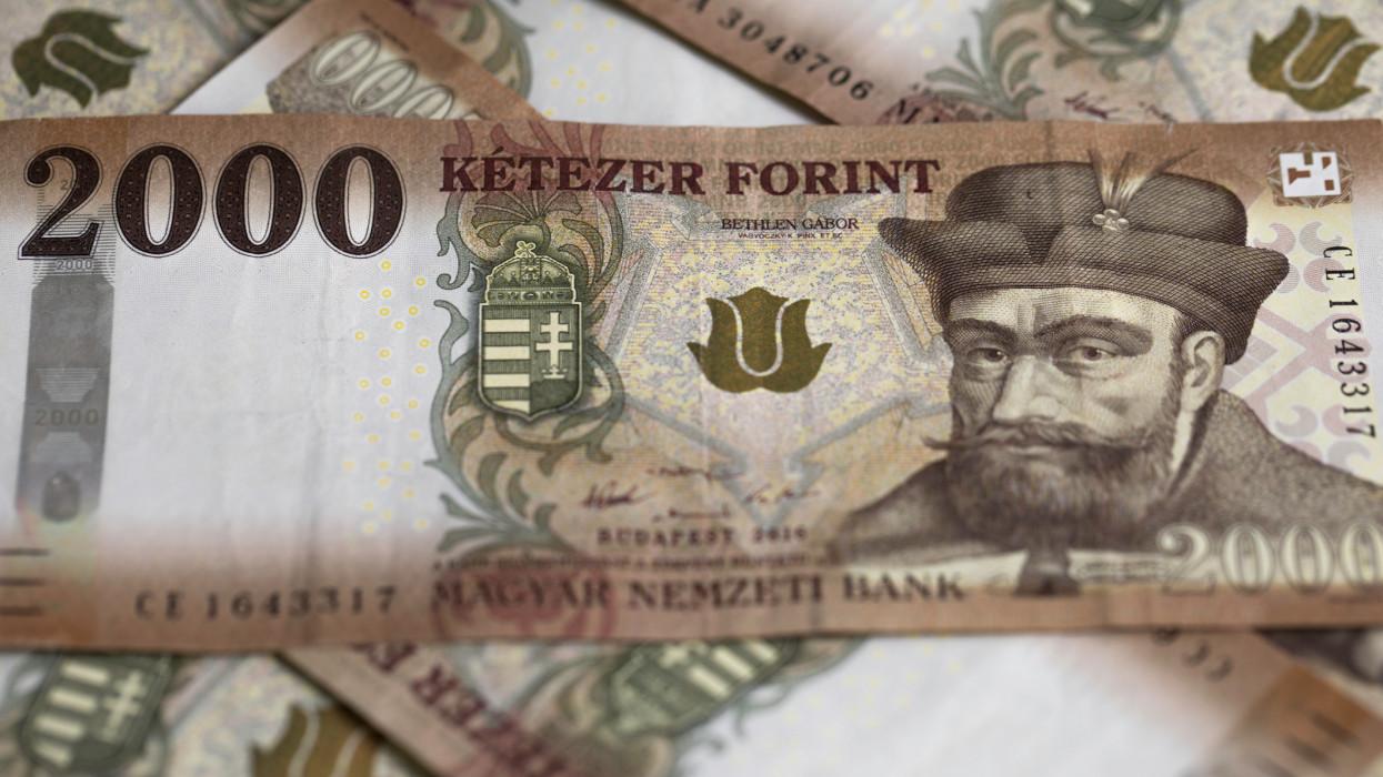 Rengeteg pénzhez jutott 38 ezer magyar cég: nagyon pörög ez a támogatás
