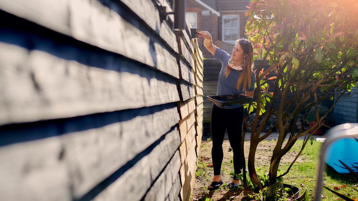 full length creative angle of attractive woman painting black fence with brush
