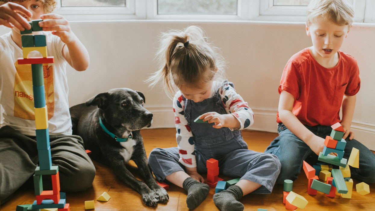 Three cute kids building colourful wooden shape blocks in a domestic room, watched by their dog.