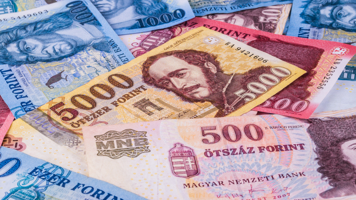 Banknotes of the Hungarian currency -Forint, close-up.
