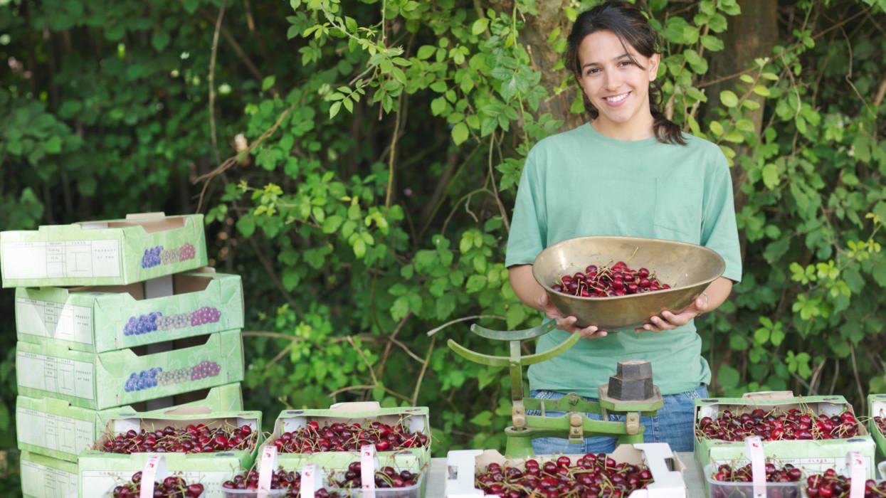 England, UK market cherry