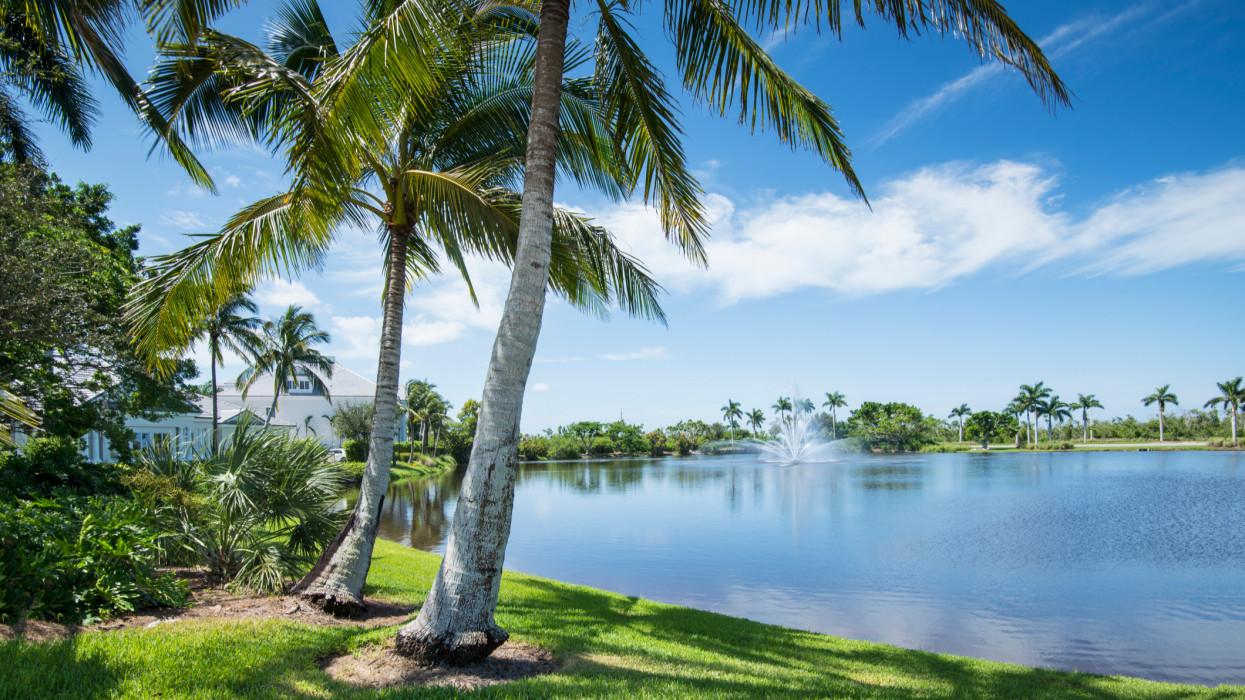 Residential neighborhood in Naples, Florida.