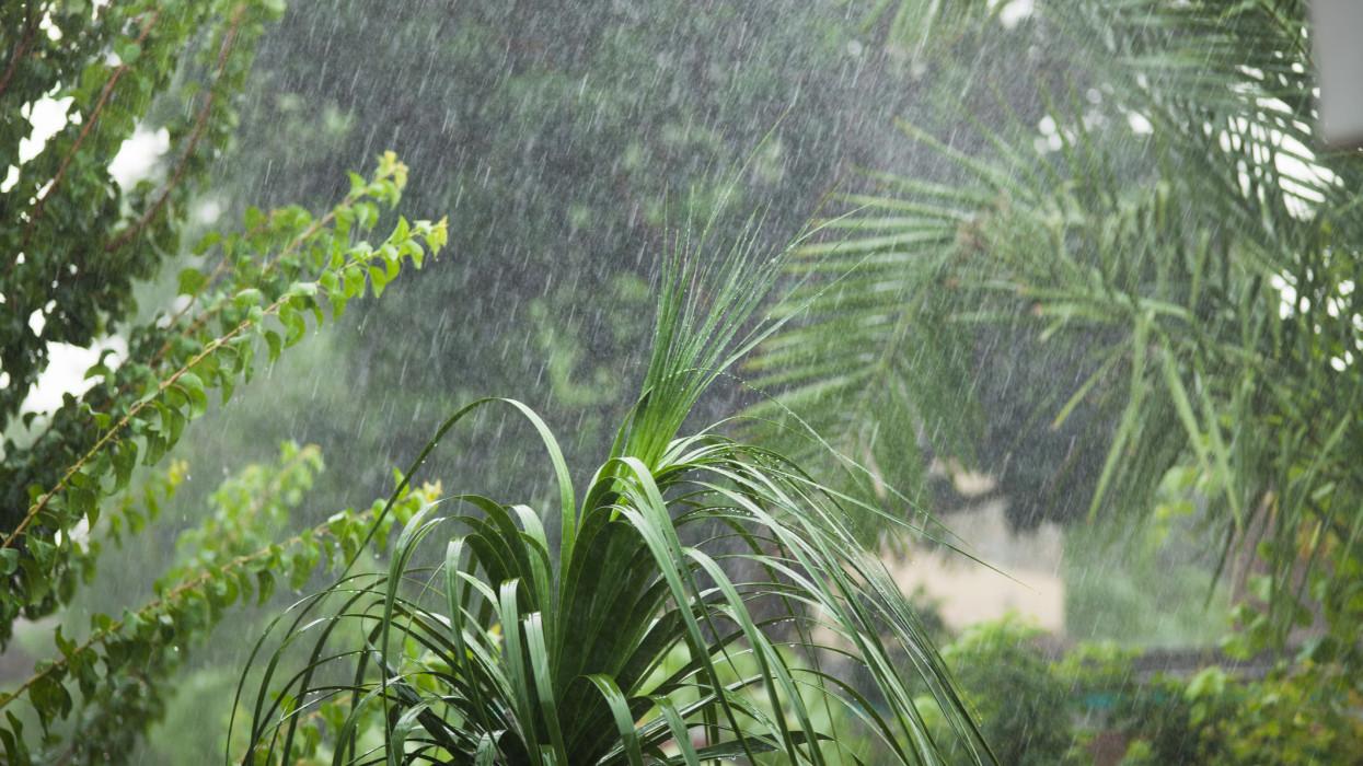 Para lesz a hétvégi időjárás: kiadták a figyelmeztetést, zivatarokkal indul a július