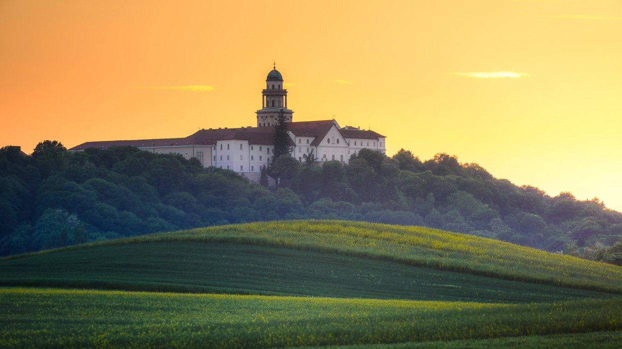 Pannonhalma Archabbey with wheat field on sunset time