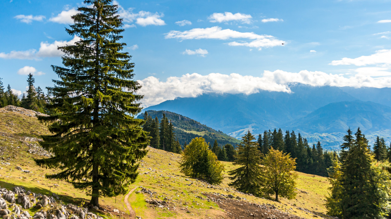 Piatra Craiului National Park, Romania - October 2nd, 2020: View of a valley, forest and the Piatra Craiului mountains with the morning sun light, against a sunny blue sky with clouds.