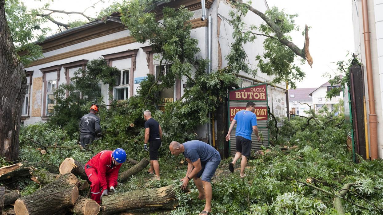 Nyíregyháza, 2021. augusztus 1.Épületre borult fákat távolítanak el vihar után a Nyíregyházán, a Szent István utcában 2021. augusztus 1-jén.MTI/Balázs Attila