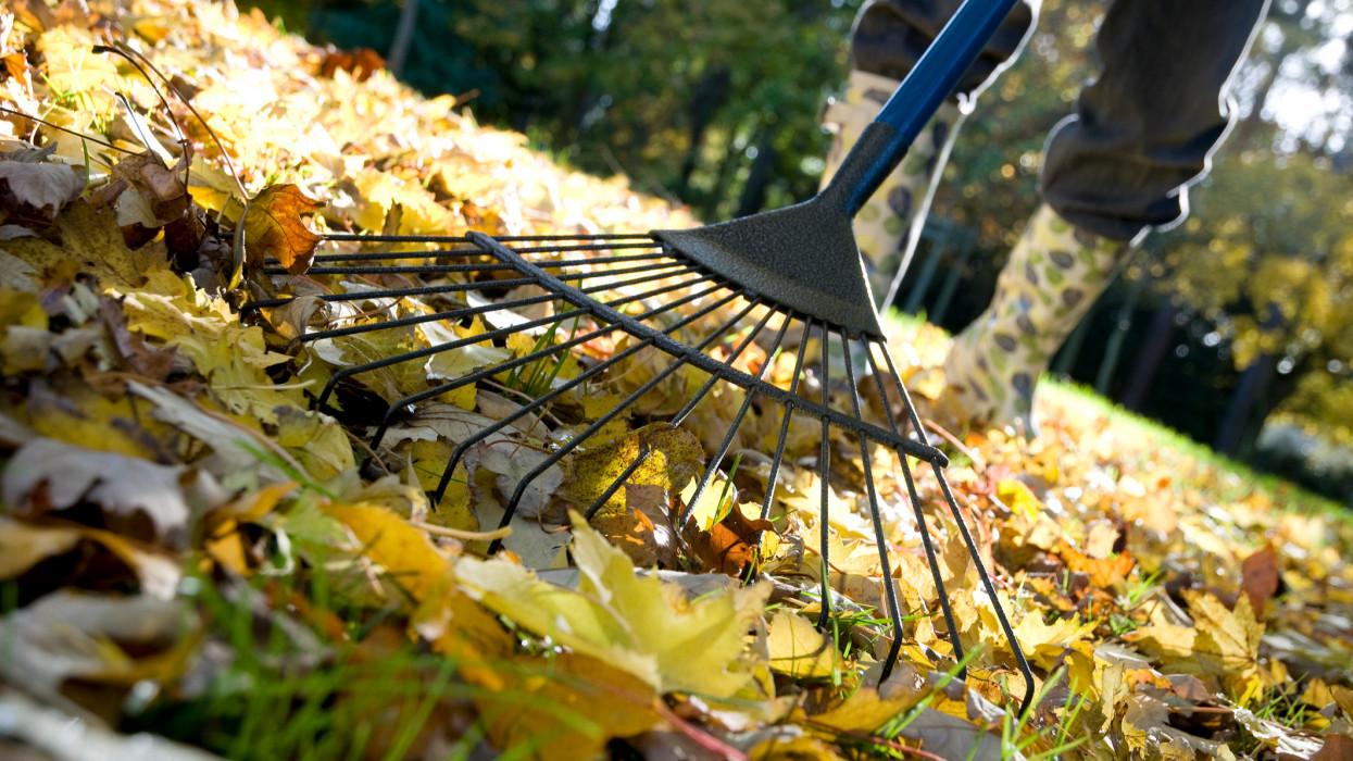 Húzós ősz vár a magyar háztulajokra: kilőttek az árak, ráfizethetsz a kényelemre