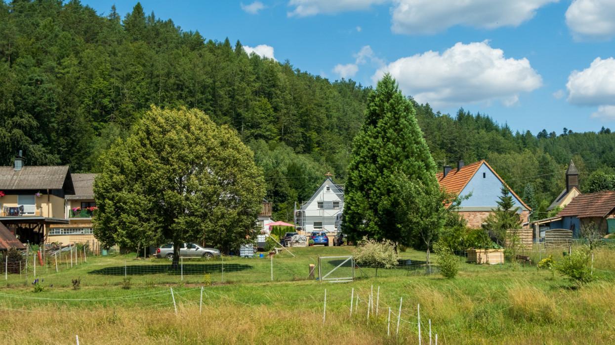 les vacances dans la foret de pfälzerwald à Kaiserslautern en Allemange avec le temps magnifique avec le ciel bleu.