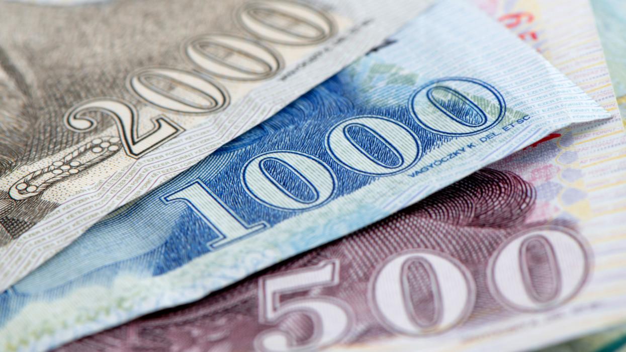 forint detail