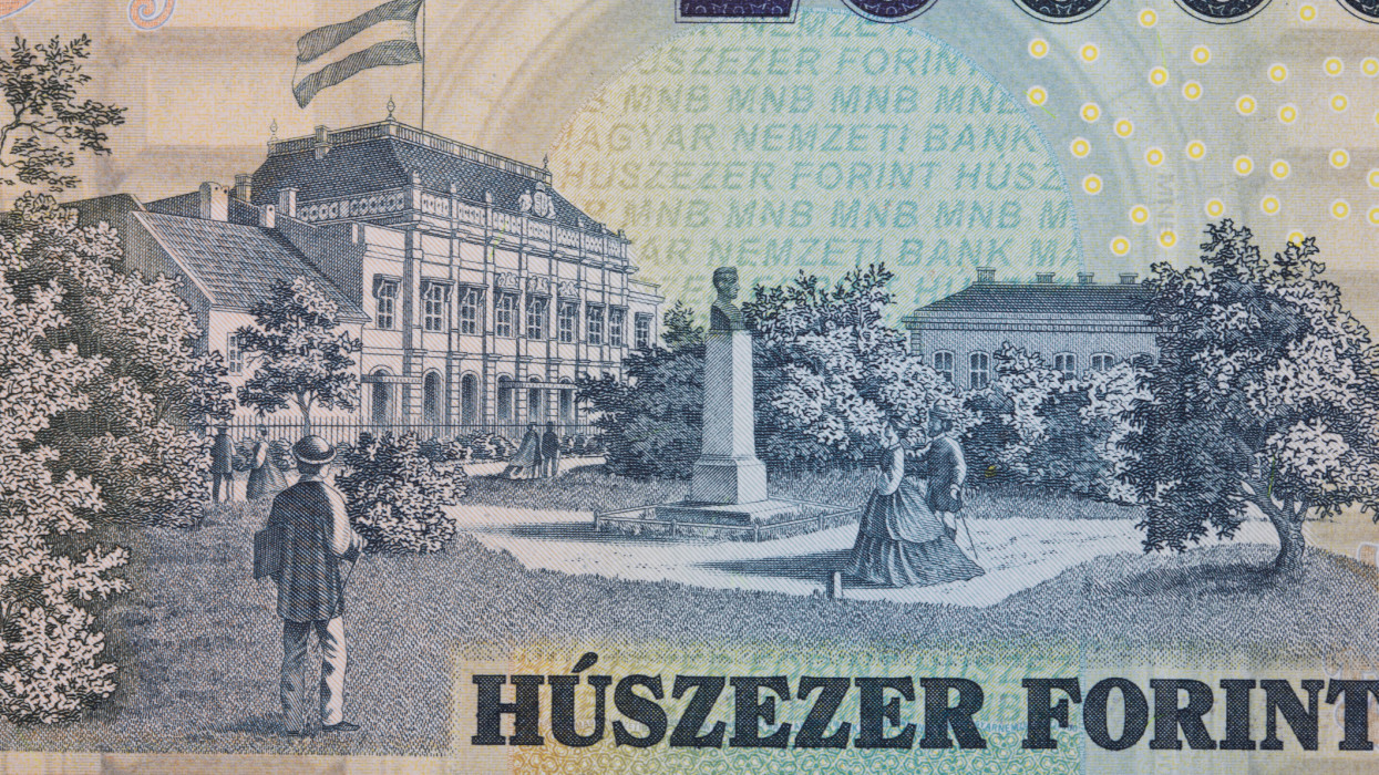 Old House of Representatives in Pest from Hungarian money - Forint