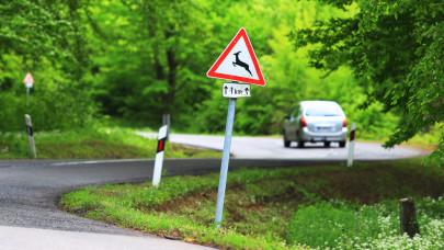 Életveszély az utakon: erről minden magyar autósnak tudnia kell