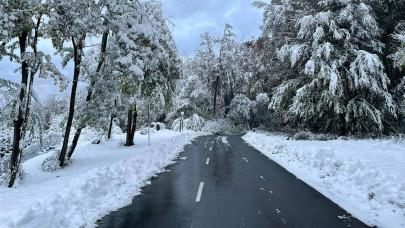 Már a Bükkben is leesett a hó: mutatjuk, meddig tarthat a havazás északon