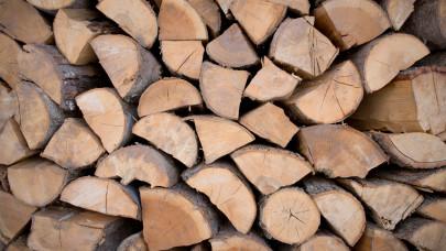 Indul a fa- és szénosztás: ezek a magyarok számíthatnak ingyen tüzelőre